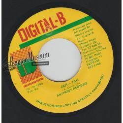 "Anthony Redrose - Jah Jah - Digital B 7"""