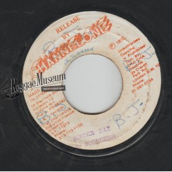 Errol Scorcher - Sister Pat - Channel One 7""