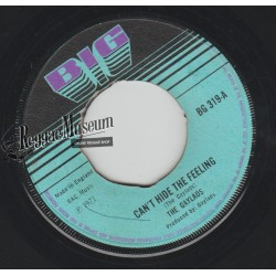 """Gaylads - Cant Hide The Feeling - Big 7"""""""
