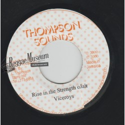 Viceroys - Rise In The Strength Of Jah - Thompson Sounds 7""