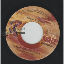 Father Richard Ho Lung - Babylon A Catch Me - Wild Flower 7""