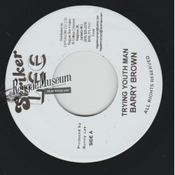 Barry Brown - Trying Youth Man - Striker Lee 7""