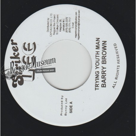 """Barry Brown - Trying Youth Man - Striker Lee 7"""""""