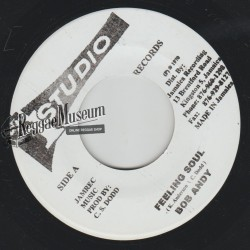 Bob Andy - Feeling Soul - Studio 1 7""
