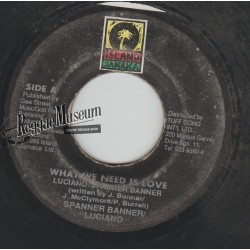 """Spanner Banner & Luciano - What We Need Is Love - Island 7"""""""