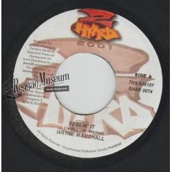 """Wayne Marshall - Feelin It - 2 Hard 7"""""""