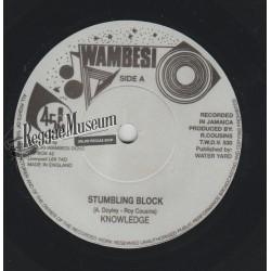 """Knowledge - Stumbling Block - Wambesi 7"""""""