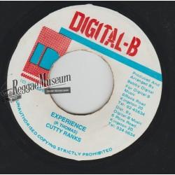 "Cutty Ranks - Experience - Digital B 7"""
