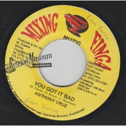 Anthony Cruz - You Got It Bad - Mixing Finga 7""